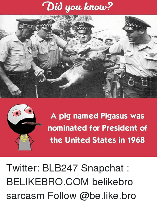 nominal: Did you know?  A pig named Pigasus was  nominated for President of  the United States in 1968 Twitter: BLB247 Snapchat : BELIKEBRO.COM belikebro sarcasm Follow @be.like.bro