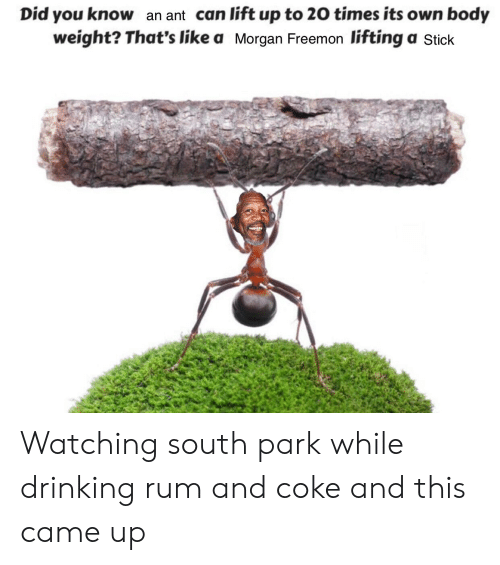 Drinking, Funny, and South Park: Did you know an ant can lift up to 20 times its own body  weight? That's like a Morgan Freemon lifting a Stick Watching south park while drinking rum and coke and this came up