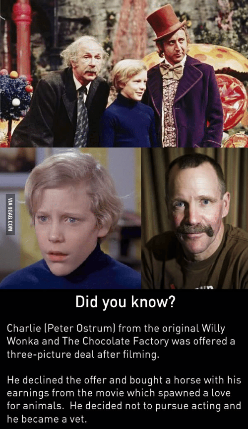 Peter Ostrum: Did you know?  Charlie (Peter Ostrum) from the original Willy  Wonka and The Chocolate Factory was offered a  three-picture deal after filming.  He declined the offer and bought a horse with his  earnings from the movie which spawned a love  for animals. He decided not to pursue acting and  he became a vet.