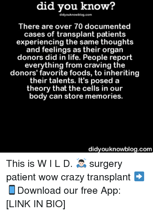 favoritism: did you know?  did youknowblog.com  There are over 70 documented  cases of transplant patients  experiencing the same thoughts  and feelings as their organ  donors did in life. People report  everything from craving the  donors' favorite foods, to inheriting  their talents. It's posed a  theory that the cells in our  body can store memories.  didyouknowblog.com This is W I L D. 🙇🏻 surgery patient wow crazy transplant ➡📱Download our free App: [LINK IN BIO]