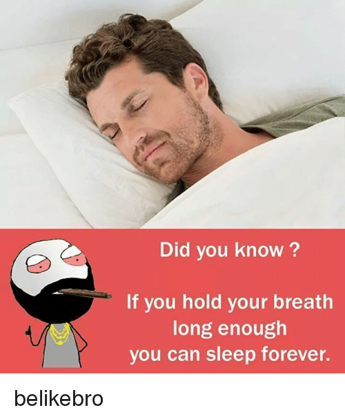Memes, Forever, and Sleep: Did you know?  If you hold your breath  long enough  you can sleep forever. belikebro