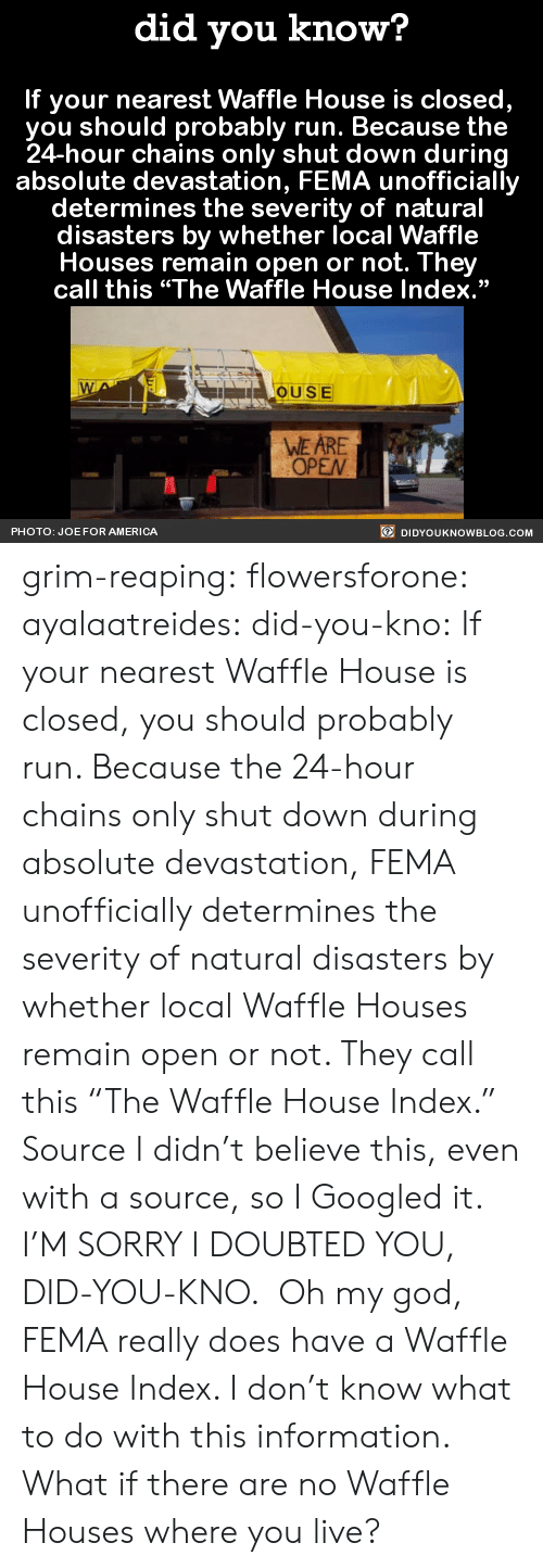 """Waffle House: did you know?  If your nearest Waffle House is closed,  you should probably run. Because the  24-hour chains only shut down during  absolute devastation, FEMA unofficially  determines the severity of natural  disasters by whether local Waffle  Houses remain open or not. They  call this """"The Waffle House Index.""""  OUSE  WE ARE  OPEN  PHOTO: JOE FOR AMERICA  DIDYOUKNOWBLOG.COM grim-reaping: flowersforone:   ayalaatreides:  did-you-kno: If your nearest Waffle House is closed,  you should probably run. Because the  24-hour chains only shut down during  absolute devastation, FEMA unofficially  determines the severity of natural  disasters by whether local Waffle  Houses remain open or not. They  call this """"The Waffle House Index.""""  Source I didn't believe this, even with a source, so I Googled it. I'M SORRY I DOUBTED YOU, DID-YOU-KNO. Oh my god, FEMA really does have a Waffle House Index. I don't know what to do with this information.  What if there are no Waffle Houses where you live?"""