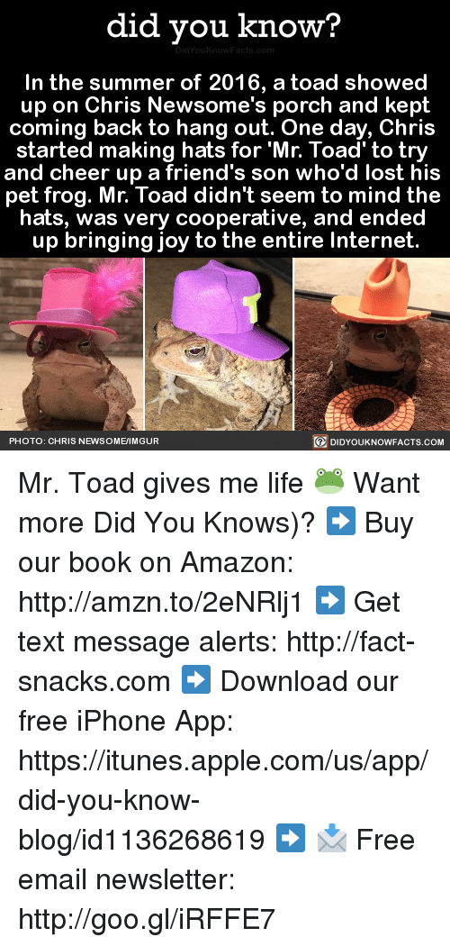 imgure: did you know?  In the summer of 2016, a toad showed  up on Chris Newsome's porch and kept  coming back to hang out. One day, Chris  started making hats for Mr. Toad to try  and cheer up a friend's son who'd lost his  pet frog. Mr. Toad didn't seem to mind the  hats, was very cooperative, and ended  up bringing joy to the entire Internet.  PHOTO: CHRIS NEWSOME/IMGUR  DIDYOUKNOWFACTS.COM Mr. Toad gives me life 🐸  Want more Did You Knows)? ➡  Buy our book on Amazon: http://amzn.to/2eNRlj1 ➡ Get text message alerts: http://fact-snacks.com ➡ Download our free iPhone App: https://itunes.apple.com/us/app/did-you-know-blog/id1136268619 ➡ 📩  Free email newsletter: http://goo.gl/iRFFE7