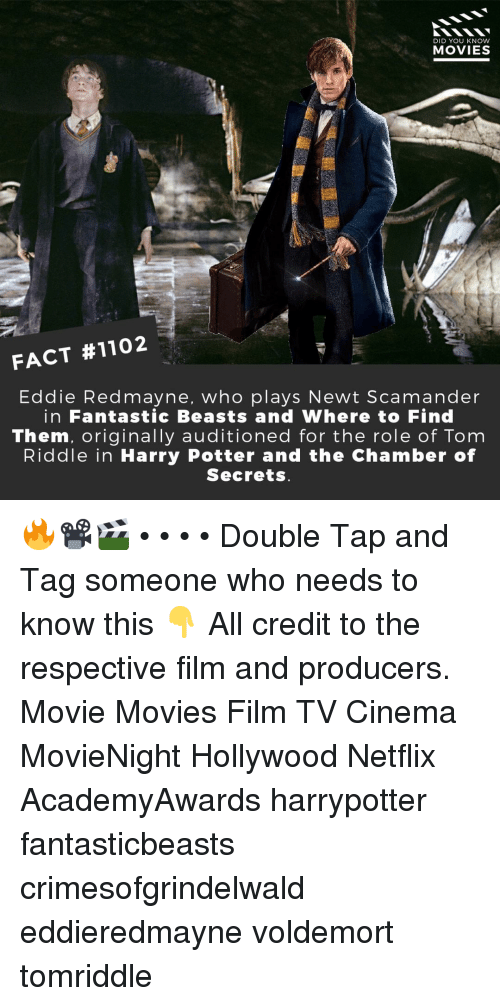 harrypotter: DID YOU KNOW  MOVIES  FACT #1102  Eddie Redmayne, who plays Newt Scamander  in Fantastic Beasts and Where to Find  Them, originally auditioned for the role of Tom  Riddle in Harry Potter and the Chamber of  Secrets 🔥📽️🎬 • • • • Double Tap and Tag someone who needs to know this 👇 All credit to the respective film and producers. Movie Movies Film TV Cinema MovieNight Hollywood Netflix AcademyAwards harrypotter fantasticbeasts crimesofgrindelwald eddieredmayne voldemort tomriddle