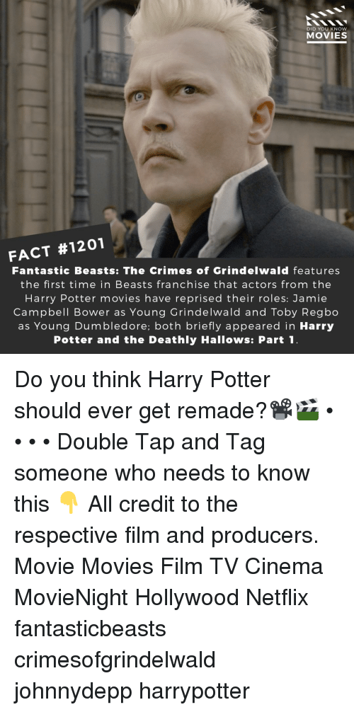 harrypotter: DID YOU KNOW  MOVIES  FACT #1201  Fantastic Beasts: The Crimes of Grindelwald features  the first time in Beasts franchise that actors from the  Harry Potter movies have reprised their roles: Jamie  Campbell Bower as Young Grindelwald and Toby Regbo  as Young Dumbledore; both briefly appeared in Harry  Potter and the Deathly Hallows: Part1 Do you think Harry Potter should ever get remade?📽️🎬 • • • • Double Tap and Tag someone who needs to know this 👇 All credit to the respective film and producers. Movie Movies Film TV Cinema MovieNight Hollywood Netflix fantasticbeasts crimesofgrindelwald johnnydepp harrypotter