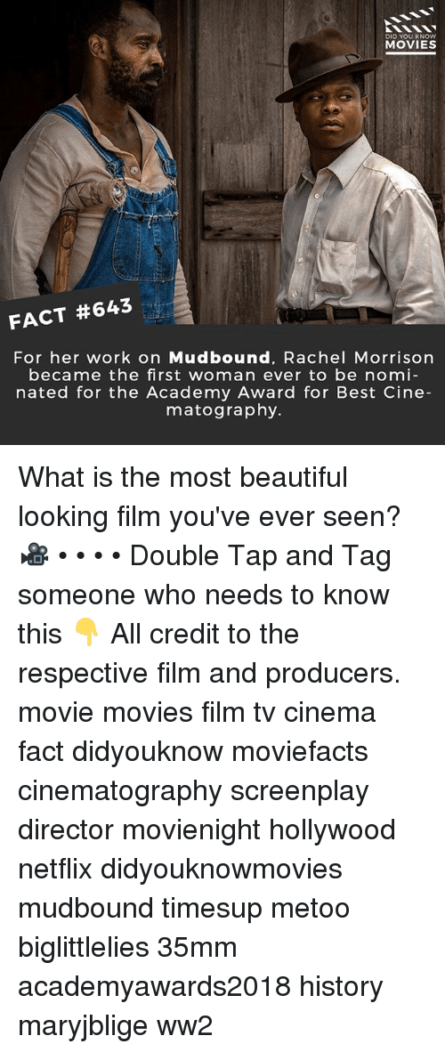 Biglittlelies: DID YOU KNOW  MOVIES  FACT #643  For her work on Mudbound, Rachel Morrisorn  became the first woman ever to be nomi  nated for the Academy Award for Best Cine  matography. What is the most beautiful looking film you've ever seen? 🎥 • • • • Double Tap and Tag someone who needs to know this 👇 All credit to the respective film and producers. movie movies film tv cinema fact didyouknow moviefacts cinematography screenplay director movienight hollywood netflix didyouknowmovies mudbound timesup metoo biglittlelies 35mm academyawards2018 history maryjblige ww2