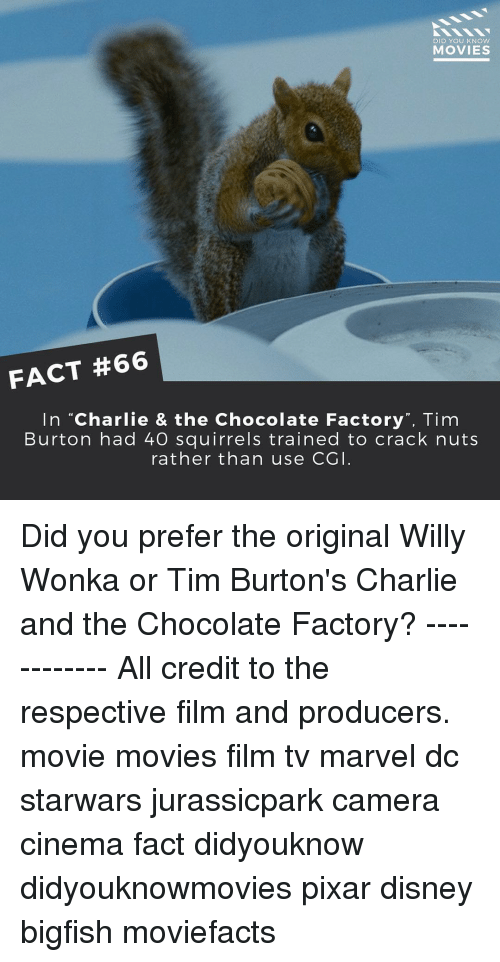 """willie wonka: DID YOU KNOW  MOVIES  FACT #66  In """"Charlie & the Chocolate Factory"""", Tim  Burton had 40 squirrels trained to crack nuts  rather than use CGI Did you prefer the original Willy Wonka or Tim Burton's Charlie and the Chocolate Factory? ------------ All credit to the respective film and producers. movie movies film tv marvel dc starwars jurassicpark camera cinema fact didyouknow didyouknowmovies pixar disney bigfish moviefacts"""