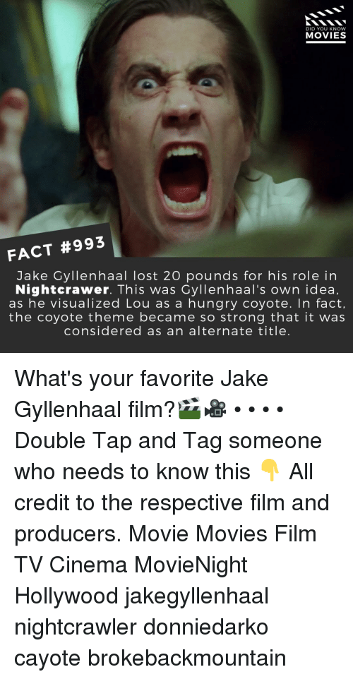 Hungry, Jake Gyllenhaal, and Memes: DID YOU KNOW  MOVIES  FACT #993  Jake Gyllenhaal lost 20 pounds for his role in  Nightcrawer. This was Cyllenhaal's own idea,  as he visualized Lou as a hungry coyote. In fact,  the coyote theme became so strong that it was  considered as an alternate title. What's your favorite Jake Gyllenhaal film?🎬🎥 • • • • Double Tap and Tag someone who needs to know this 👇 All credit to the respective film and producers. Movie Movies Film TV Cinema MovieNight Hollywood jakegyllenhaal nightcrawler donniedarko cayote brokebackmountain
