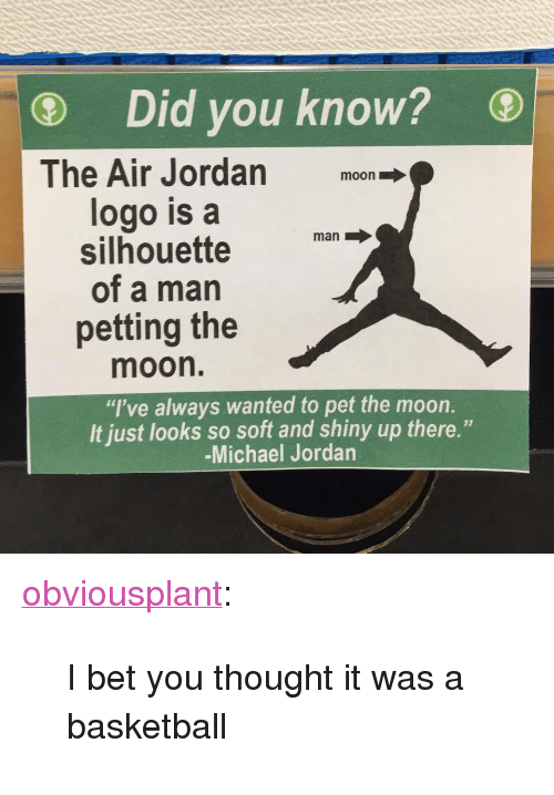 "Air Jordan, Basketball, and I Bet: Did you know?  The Air Jordan moon  logo is a  silhouette  of a man  petting the  man  moon.  ""I've always wanted to pet the moon.  It just looks so soft and shiny up there.""  -Michael Jordan <p><a class=""tumblr_blog"" href=""http://obviousplant.tumblr.com/post/147050555798"" target=""_blank"">obviousplant</a>:</p> <blockquote> <p>I bet you thought it was a basketball</p> </blockquote>"