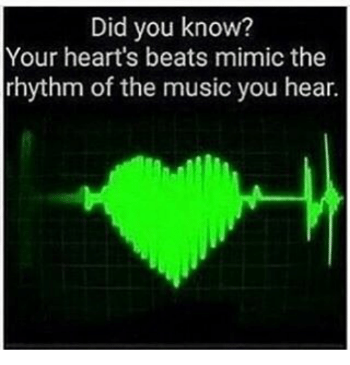 Mimicer: Did you know?  Your heart's beats mimic the  rhythm of the music you hear