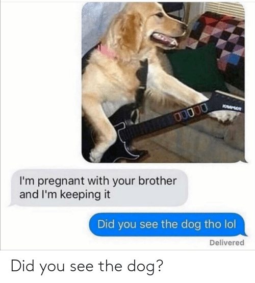You See: Did you see the dog?