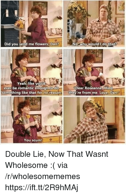 Love, Yeah, and Flowers: Did you send me flowers, Dan?  No, why-would I do that?  Yeah, like you'd  ever be romantic enough to do  Dear Roseanne, Illied  omething like that for noreason.they re from me. Love, Dan.  You scum Double Lie, Now That Wasnt Wholesome :( via /r/wholesomememes https://ift.tt/2R9hMAj