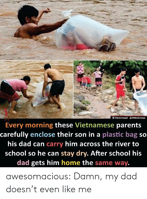 Dad, Parents, and School: /didyouknowpaget odidyouknewpage  Every morning these Vietnamese parents  carefully enclose their son in a plastic bag so  his dad can carry him across the river to  school so he can stay dry. After school his  dad gets him home the same way. awesomacious:  Damn, my dad doesn't even like me