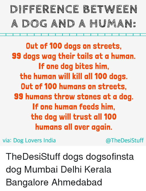 bangalore: DIFFERENCE BETWEEN  A DOG AND A HUMANE  Out of 100 dogs on streets,  99 dogs wag their tails at a human.  If one dog bites him,  the human will kill all 100 dogs.  Out of 100 humans on streets,  99 humans throw stones at a dog  If one human feeds him,  the dog will trust all 100  humans all over again.  via: Dog Lovers India  @The Desi Stuff TheDesiStuff dogs dogsofinsta dog Mumbai Delhi Kerala Bangalore Ahmedabad