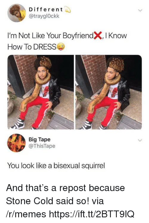 stone cold: Different  @trayglOckk  I'm Not Like Your BoyfriendX, I Knoww  How To DRESS  Big Tape  @ThisTape  You look like a bisexual squirrel And that's a repost because Stone Cold said so! via /r/memes https://ift.tt/2BTT9lQ