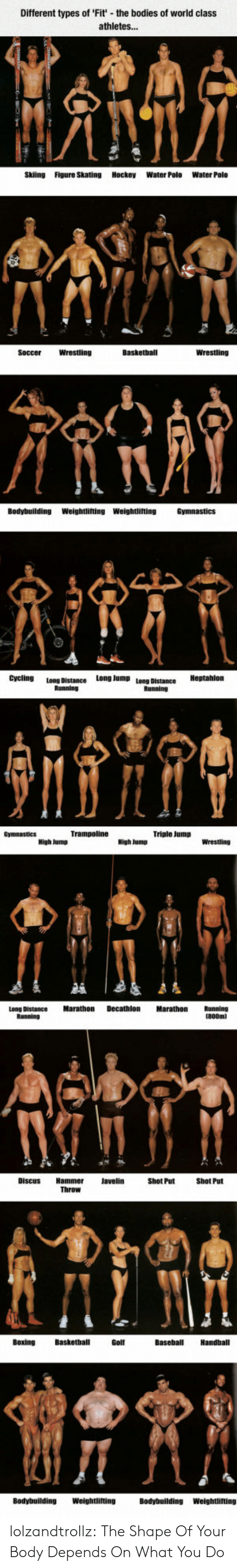 Bodybuilding: Different types of 'Fit' the boo  of world class  athletes...  Skiing  Figure Skating Hockey  Water Polo  Water Polo  Basketball  Wrestling  Wrestling  Soccer  Bodybuilding  Weightlifting Weightlifting  Cycling  Long Jump  Long Distance  Bunninn  Triple Jump  Decathlon  Marathon  Marathon  Long Distance  Shot Put  Throw  Basketball  Baseball  Handball  Bοxing  Golf  Weightlifting  Bodybuilding  Bodybuilding  Weightlifting lolzandtrollz:  The Shape Of Your Body Depends On What You Do