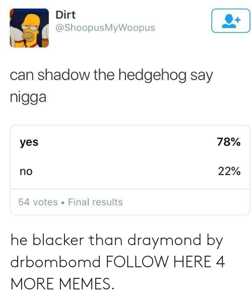 Dank, Memes, and Target: Dirt  @ShoopusMyWoopus  can shadow the hedgehog say  nigga  yes  78%  no  22%  54 votes Final results he blacker than draymond by drbombomd FOLLOW HERE 4 MORE MEMES.
