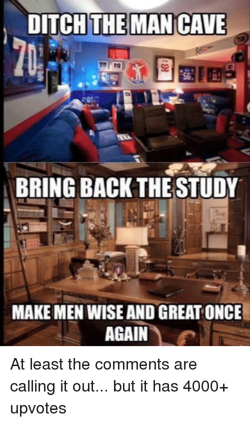 Neckbeard Things: DITCH THE MAN CAVE  BRING BACK THE STUDY  MAKE MEN WISE AND GREAT ONCE  AGAIN At least the comments are calling it out... but it has 4000+ upvotes