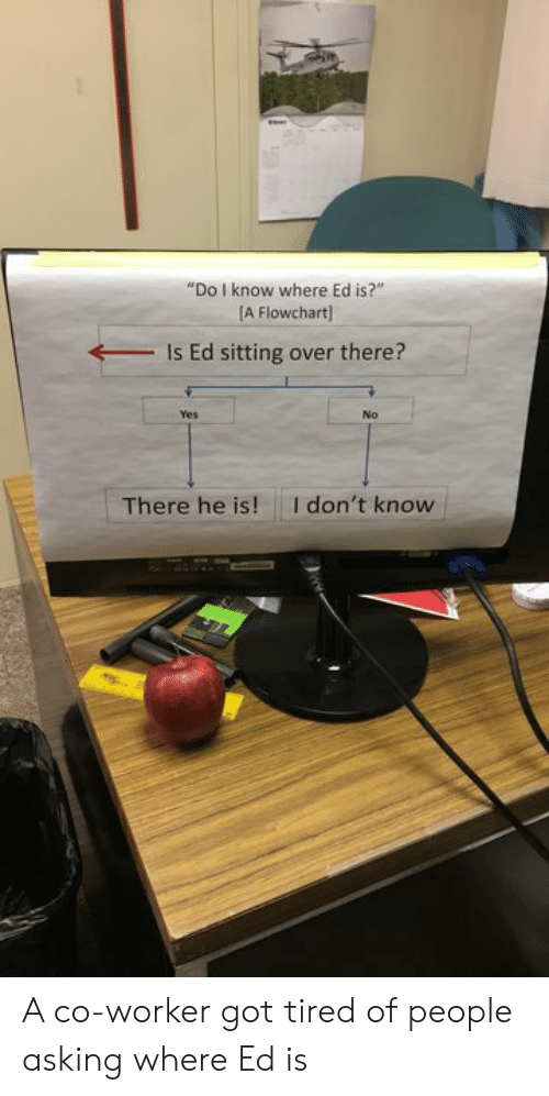 """co-worker: """"Do I know where Ed is?""""  A Flowchart]  Is Ed sitting over there?  Yes  No  I don't know  There he is! A co-worker got tired of people asking where Ed is"""