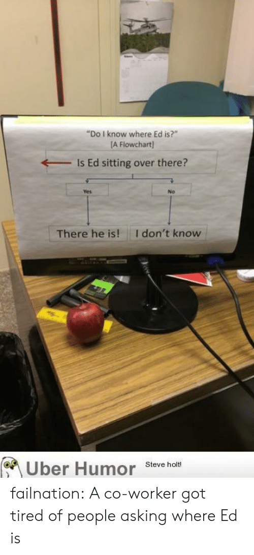 """co-worker: """"Do I know where Ed is?""""  [A Flowchart  Is Ed sitting over there?  Yes  No  I don't know  There he is!  Uber Humor  Steve holt! failnation:  A co-worker got tired of people asking where Ed is"""
