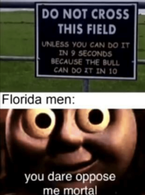 Cross, Florida, and Can: DO NOT CROSS  THIS FIELD  UNLESS YOU CAN DO IT  IN 9 SECONDS  BECAUSE THE BULL  CAN DO IT IN 10  Florida men:  you dare oppose  me mortal