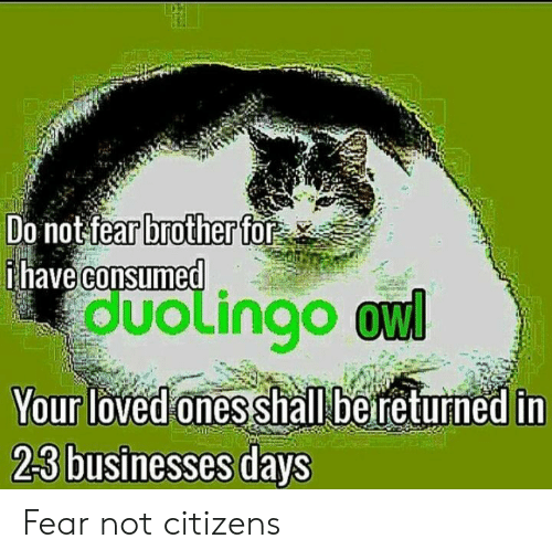 Fear, Brother, and Owl: Do notfear brother for  have consumed  duolingo owl  Your loved ones shall be returhed in Fear not citizens