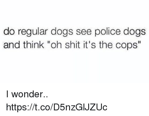 """police dogs: do regular dogs see police dogs  and think """"oh shit it's the cops"""" I wonder.. https://t.co/D5nzGlJZUc"""