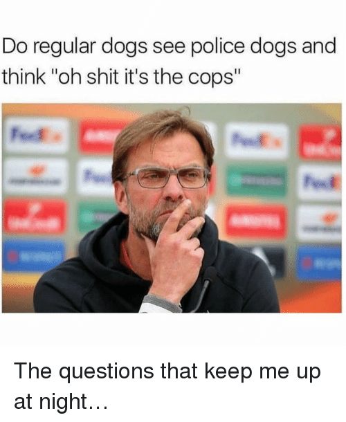 """police dogs: Do regular dogs see police dogs and  think """"oh shit it's the cops"""" The questions that keep me up at night…"""