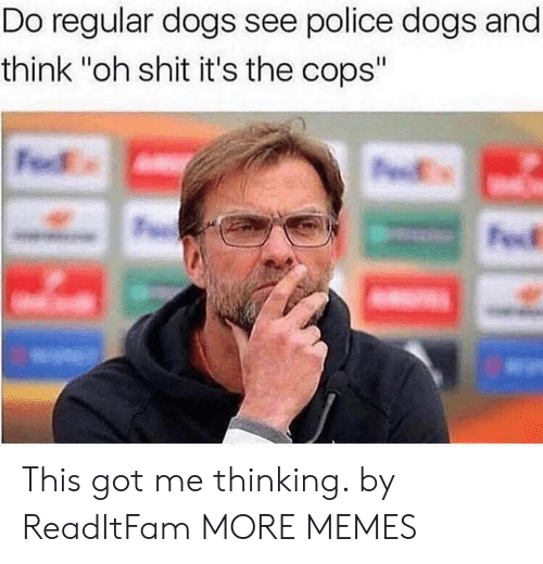 """police dogs: Do regular dogs see police dogs and  think """"oh shit it's the cops"""" This got me thinking. by ReadItFam MORE MEMES"""