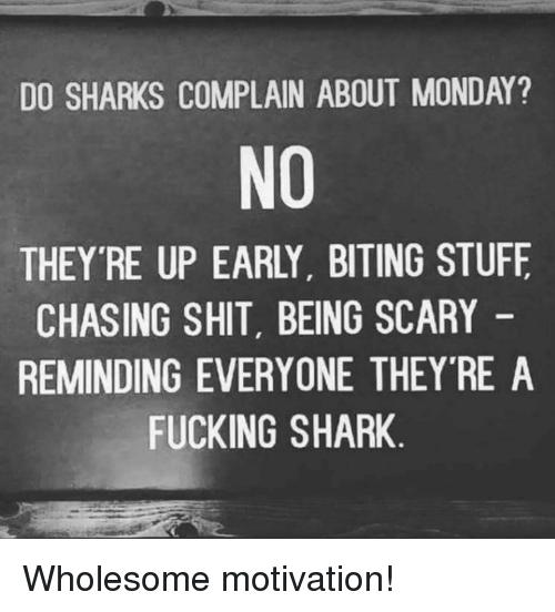 Fucking, Shit, and Shark: DO SHARKS COMPLAIN ABOUT MONDAY?  NO  THEY'RE UP EARLY, BITING STUFF  CHASING SHIT, BEING SCARY  REMINDING EVERYONE THEYRE A  FUCKING SHARK <p>Wholesome motivation!</p>