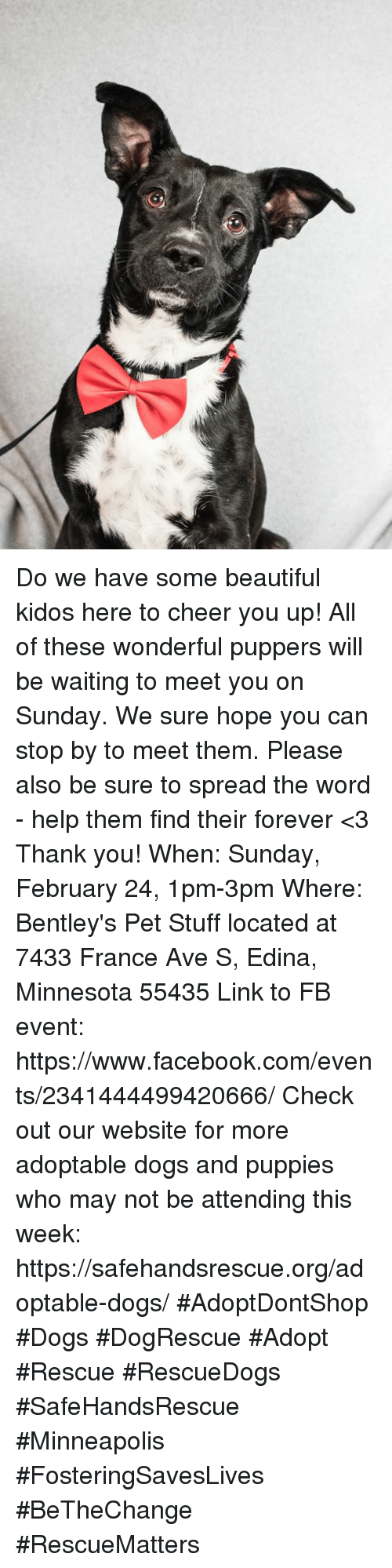 Beautiful, Dogs, and Facebook: Do we have some beautiful kidos here to cheer you up! All of these wonderful puppers will be waiting to meet you on Sunday. We sure hope you can stop by to meet them.   Please also be sure to spread the word - help them find their forever <3 Thank you!  When: Sunday, February 24, 1pm-3pm  Where: Bentley's Pet Stuff located at 7433 France Ave S, Edina, Minnesota 55435 Link to FB event: https://www.facebook.com/events/2341444499420666/  Check out our website for more adoptable dogs and puppies who may not be attending this week: https://safehandsrescue.org/adoptable-dogs/  #AdoptDontShop #Dogs #DogRescue #Adopt #Rescue #RescueDogs #SafeHandsRescue #Minneapolis #FosteringSavesLives #BeTheChange #RescueMatters