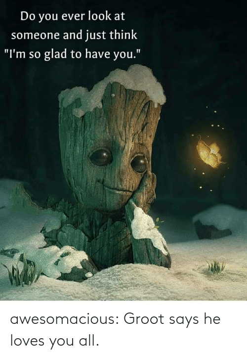 "Tumblr, Blog, and Com: Do you ever look at  someone and just think  glad to have you.""  ""I'm so awesomacious:  Groot says he loves you all."