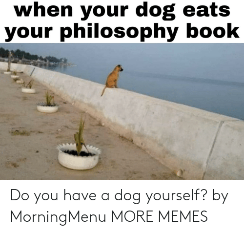 Do You Have: Do you have a dog yourself? by MorningMenu MORE MEMES