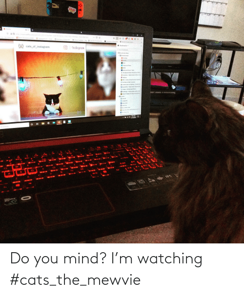 Mind: Do you mind? I'm watching #cats_the_mewvie