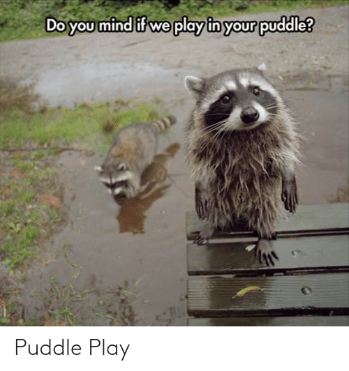 Mind, Play, and You: Do you mind if we play in your puddle? Puddle Play
