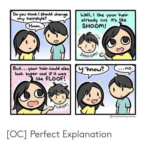 hairstyle: Do you thinkI should change  my hairstyle?  (Hmm..  Well, I like your hair  already  SHOOM!  cuz it's like  SHOOM!  But... your hair could also  (ook super cool if it was  (ike FLOOF!  y'know?  ...no.  FLOOF  @acookieadaycomics [OC] Perfect Explanation