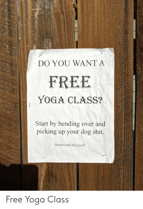 feel good: DO YOU WANT A  FREE  YOGA CLASS?  Start by bending over and  picking up your dog shit.  Doesn't that feel good? Free Yoga Class