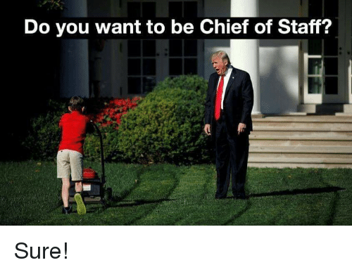 Lol, Staff, and You: Do you want to be Chief of Staff? Sure!