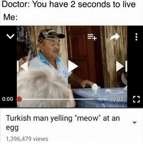 "Doctor, Live, and Man: Doctor: You have 2 seconds to live  Me:  0:02 E  0:00  Turkish man yelling ""meow"" at an  egg  1,396,479 views"