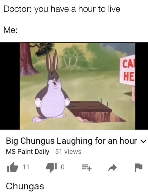 Doctor You Have A Hour To Live Me Ca He Big Chungus Laughing For An