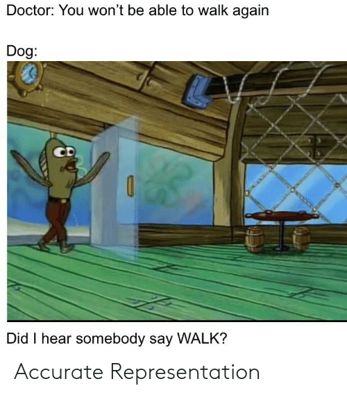 Doctor, Dank Memes, and Accurate Representation: Doctor: You won't be able to walk again  Dog:  0  Did I hear somebody say WALK? Accurate Representation