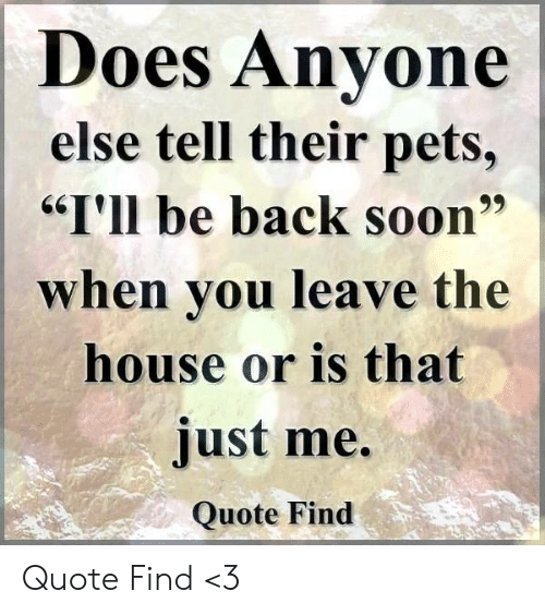 """Memes, Soon..., and Pets: Does Anvone  else tell their pets,  """"I'll be back soon""""  when vou leave the  house or is that  just me.  Quote Find Quote Find <3"""