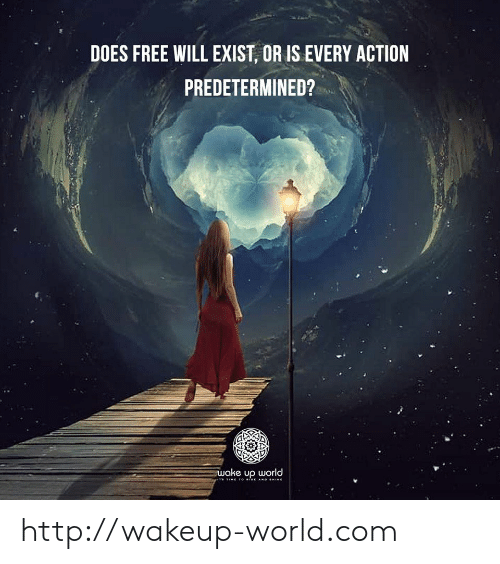 free will: DOES FREE WILL EXIST, OR IS EVERY ACTION  PREDETERMINED?  wake up world  TIME TO ise AND HINE http://wakeup-world.com