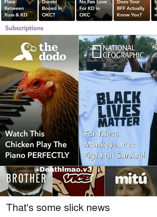 Subscripter: Does Your  NO Han Love  Durant  Does  BFF Actually  w  For KD in  Between  Booed In  Russ & KD  OKC  OKC?  Know You?  35  Subscriptions  the  NATIONAL  dodo L GEOGRAPHIC  BLACK  LIVES  MATTER  For These  Watch This  Chicken Play The  Monkeys, It's a  Piano PERFECTLY  Fight for Survival  Death Imao.v  mitu  BROTHER That's some slick news