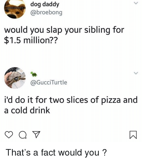 Memes, Pizza, and Cold: dog daddy  @broebong  would you slap your sibling for  $1.5 million??  GucciTurtle  i'd do it for two slices of pizza and  a cold drink That's a fact would you ?