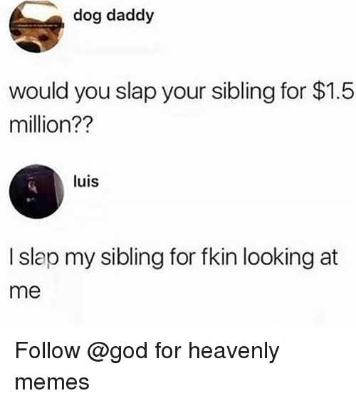 God, Memes, and Trendy: dog daddy  would you slap your sibling for $1.5  million??  luis  I slap my sibling for fkin looking at  me Follow @god for heavenly memes