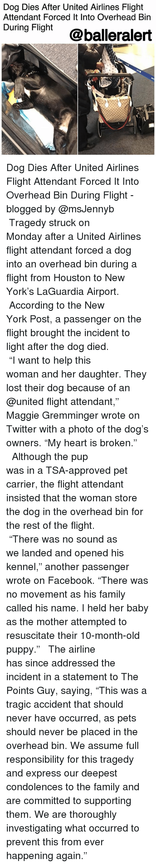 """Facebook, Family, and Memes: Dog Dies After United Airlines Flight  Attendant Forced It Into Overhead Bin  During Fight @balleralert Dog Dies After United Airlines Flight Attendant Forced It Into Overhead Bin During Flight - blogged by @msJennyb ⠀⠀⠀⠀⠀⠀⠀⠀⠀ ⠀⠀⠀⠀⠀⠀⠀⠀⠀ Tragedy struck on Monday after a United Airlines flight attendant forced a dog into an overhead bin during a flight from Houston to New York's LaGuardia Airport. ⠀⠀⠀⠀⠀⠀⠀⠀⠀ ⠀⠀⠀⠀⠀⠀⠀⠀⠀ According to the New York Post, a passenger on the flight brought the incident to light after the dog died. ⠀⠀⠀⠀⠀⠀⠀⠀⠀ ⠀⠀⠀⠀⠀⠀⠀⠀⠀ """"I want to help this woman and her daughter. They lost their dog because of an @united flight attendant,"""" Maggie Gremminger wrote on Twitter with a photo of the dog's owners. """"My heart is broken."""" ⠀⠀⠀⠀⠀⠀⠀⠀⠀ ⠀⠀⠀⠀⠀⠀⠀⠀⠀ Although the pup was in a TSA-approved pet carrier, the flight attendant insisted that the woman store the dog in the overhead bin for the rest of the flight. ⠀⠀⠀⠀⠀⠀⠀⠀⠀ ⠀⠀⠀⠀⠀⠀⠀⠀⠀ """"There was no sound as we landed and opened his kennel,"""" another passenger wrote on Facebook. """"There was no movement as his family called his name. I held her baby as the mother attempted to resuscitate their 10-month-old puppy."""" ⠀⠀⠀⠀⠀⠀⠀⠀⠀ ⠀⠀⠀⠀⠀⠀⠀⠀⠀ The airline has since addressed the incident in a statement to The Points Guy, saying, """"This was a tragic accident that should never have occurred, as pets should never be placed in the overhead bin. We assume full responsibility for this tragedy and express our deepest condolences to the family and are committed to supporting them. We are thoroughly investigating what occurred to prevent this from ever happening again."""""""