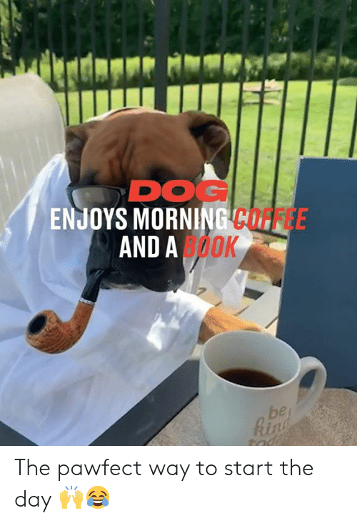 Coffee And: DOG  ENJOYS MORNING COFFEE  AND AOOK  be  Rin  tad The pawfect way to start the day 🙌😂