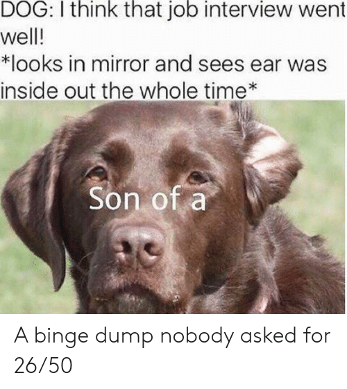 Inside Out, Job Interview, and Mirror: DOG: I think that job interview went  well!  *looks in mirror and sees ear was  inside out the whole time  Son of a A binge dump nobody asked for 26/50
