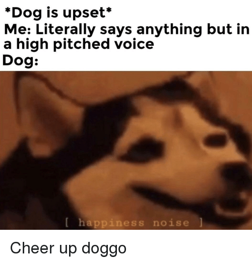 Voice, Happiness, and Doggo: *Dog is upset*  Me: Literally says anything but in  a high pitched voice  Dog:  [ happiness noise l Cheer up doggo
